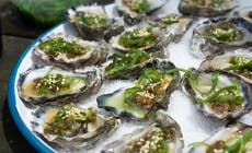 Fresh Oysters With Charred Spring Onion And Wakame Dressing