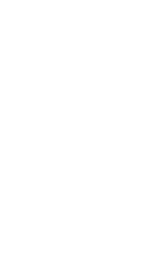 The Perfect Gift Snowflake 75