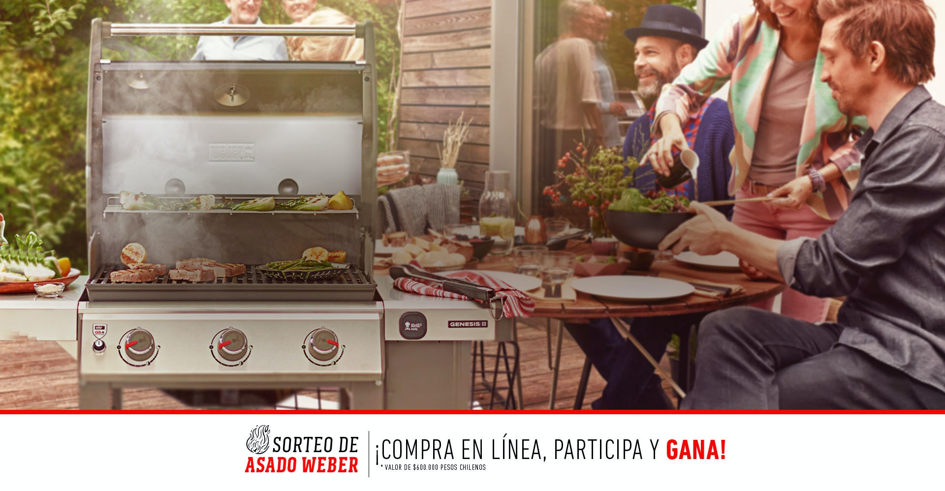 hasta 25% OFF en parrillas y accesorios 50% OFF al comprar dos clases  grill  Código: Santandernavidad2019
