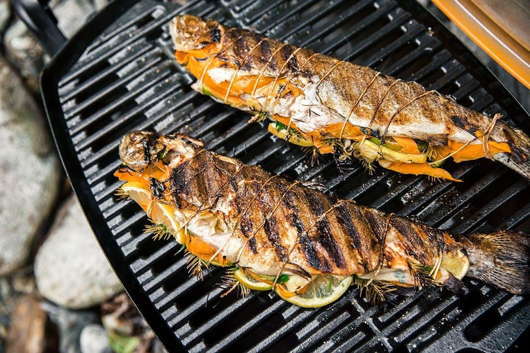 Fisch Gasgrill : Fisch und meeresfrüchte vom grill grill know how