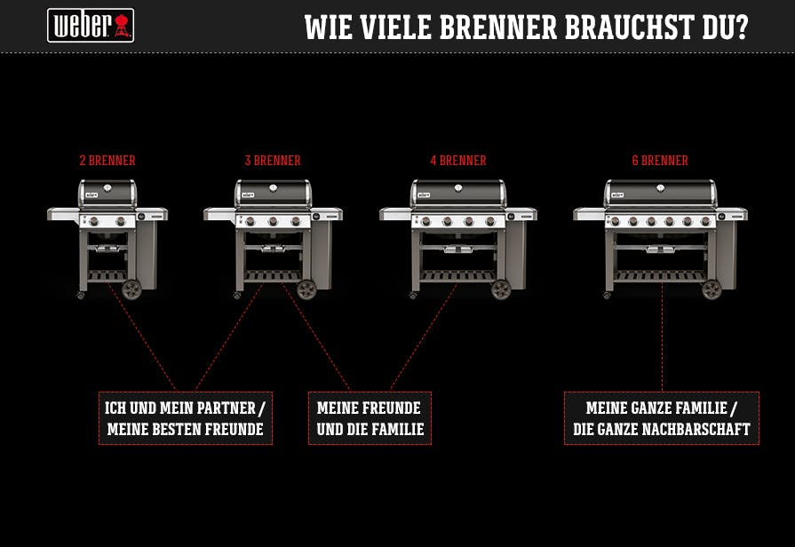 Weber Which Gas Grill 20190225 V6 Ml