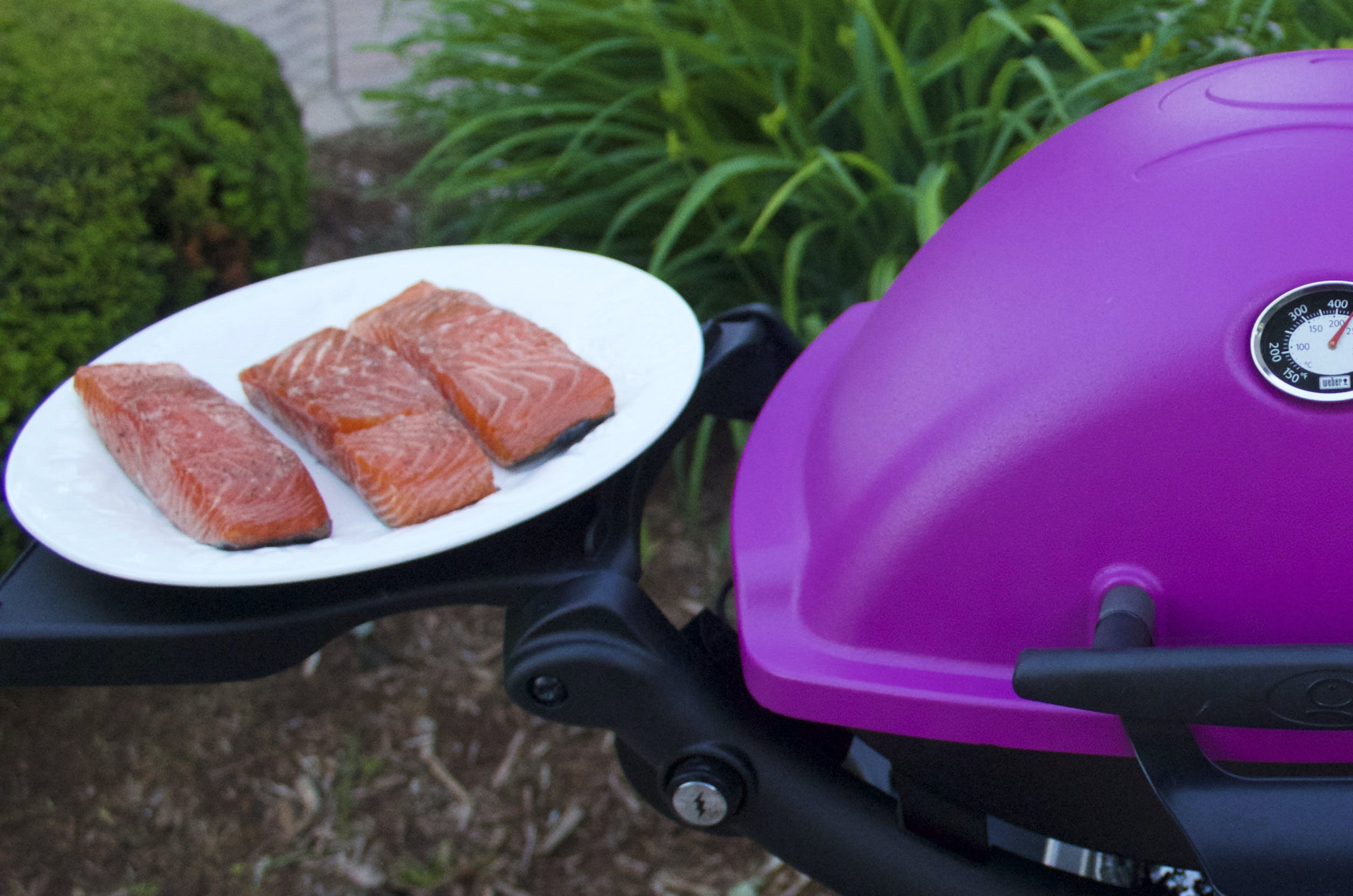 2015 08 Week 4 Easy Weeknight Wytiaz How To Grill Salmon Photo 1