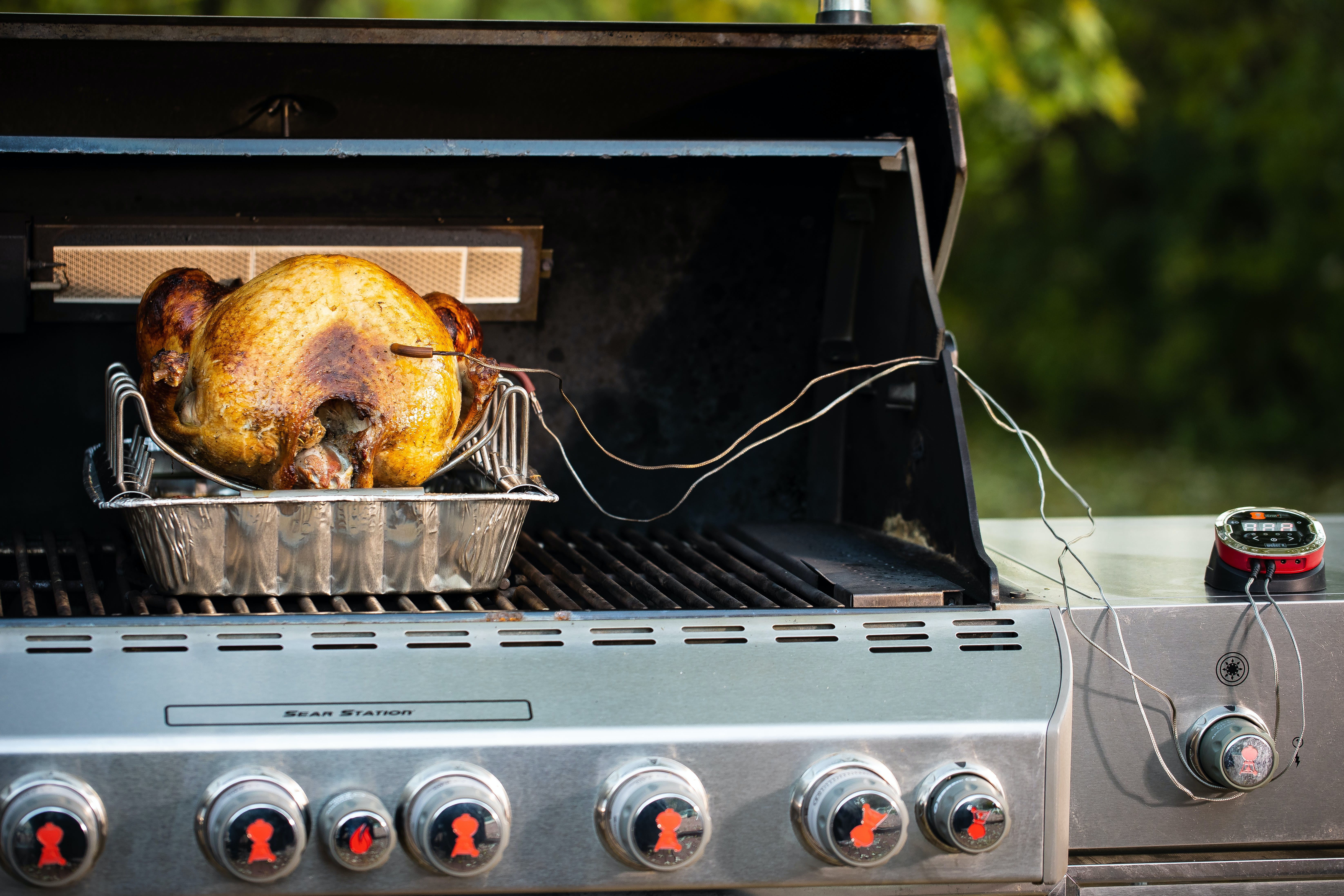 Grilled Turkey On Roasting Rack With I Grill2 On Summit Gas 24