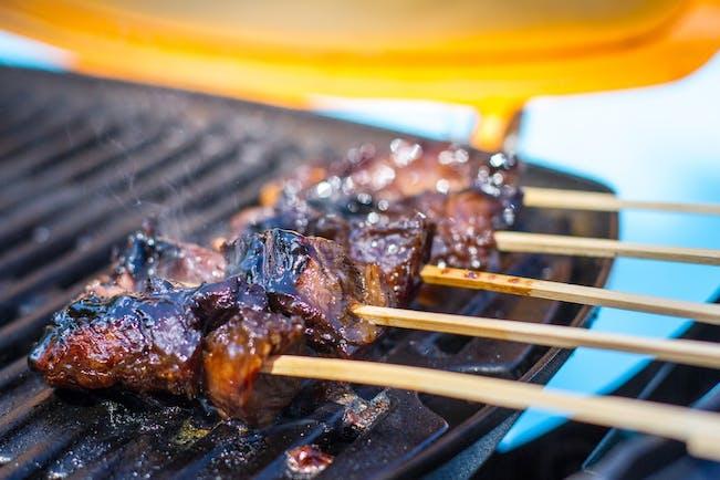 56536924F08Cb  Grilled  Skirt  Steak  Skewers On  Weber  Q 2 Copy
