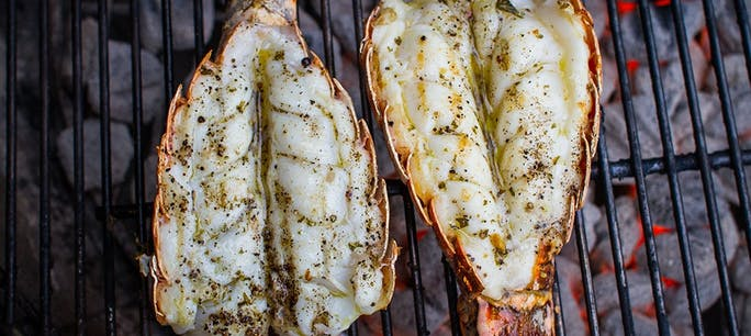 595E909421142  Grilled  Lobster  Tail 1000