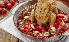 Barbecue  Chicken With  Tomato  Salsa 346X318