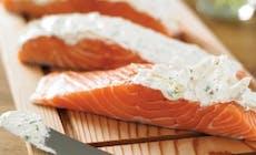 Salmon 346X318